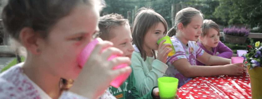 Kinderfeestje pipowagen